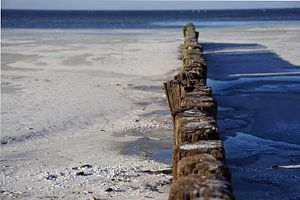 Makkum Beach van