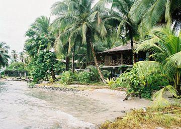 Paradise found van Raisa Zwart