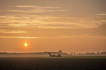 Avond zon van Marieke Tromp