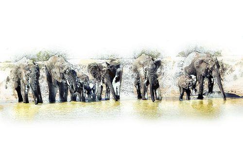 Olifanten bij een drinkplaats