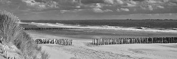 Panorama van de Zeeuwse kust van Zeeland op Foto