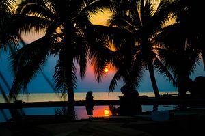 Tropische zonsondergang tussen de palmbomen van