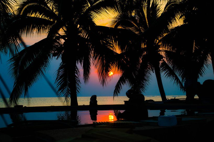 Tropische zonsondergang tussen de palmbomen van Satur8 .nl