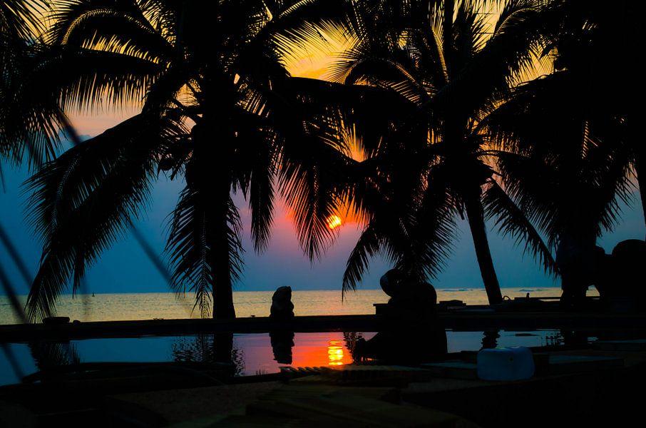 Tropische zonsondergang tussen de palmbomen