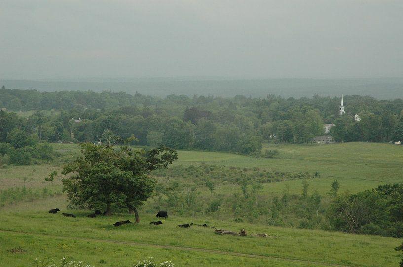 Landschap van Massachusetts van Barbara Koppe