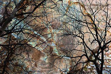 Mystieke bomen van Nicolette Verdugt