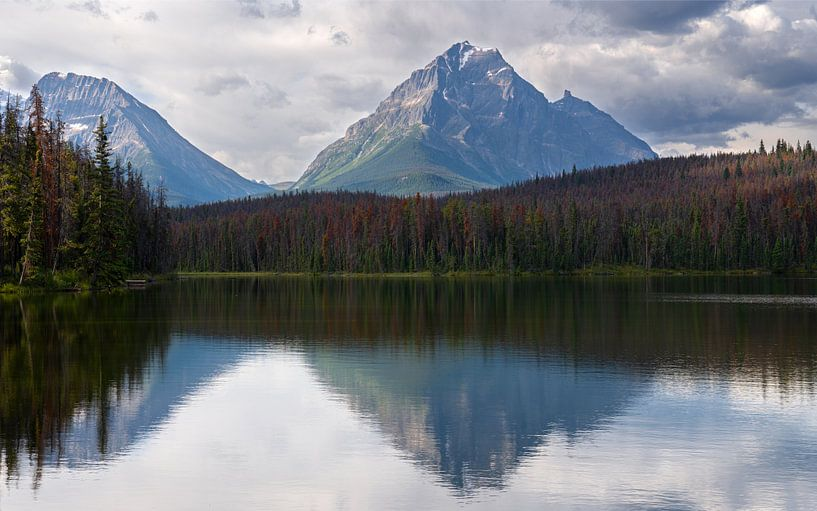 Jasper National Park, Bundesstaat Alberta, Kanada von Alexander Ludwig