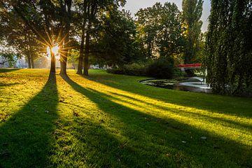 Zonnestralen in Park Valkenberg von JPWFoto
