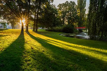 Zonnestralen in Park Valkenberg van