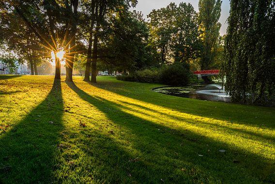 Zonnestralen in Park Valkenberg van Jean-Paul Wagemakers