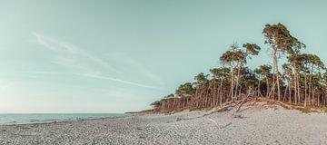 West Beach Panorama van Steffen Gierok