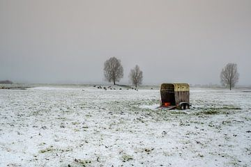 Trailer met schapen in winters landschap van Moetwil en van Dijk - Fotografie