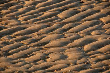 Zandheuvels von Peter Heins
