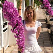 Svetlana van Santen-Boulavina profielfoto