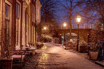 Leiden in Lockdown van Carla Matthee