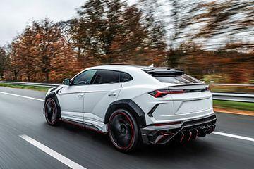 Lamborghini Mansory Urus Venatus van Bas Fransen