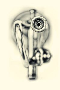 My Funny Valentine... (muziek, muziekinstrument, trompet, jazz) van Bob Daalder