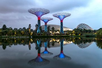 Gardens by the Bay, Singapour, sur Peter Schickert