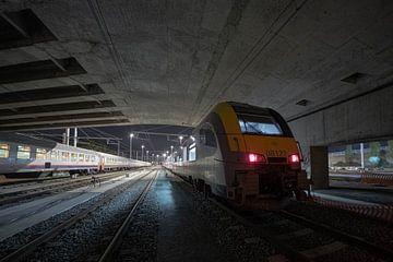 Der Zug aus dem Licht von Siebe Taeleman