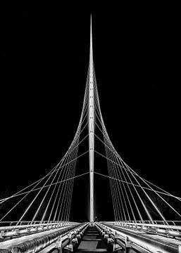 Calatrava-Brücke Harfe von Leon Okkenburg