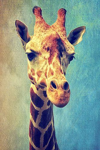 Die Giraffe van Angela Dölling