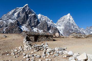 Trek to Everest Base Camp van Ton Tolboom