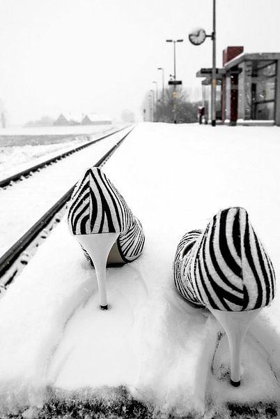 The train has left van Norbert Sülzner