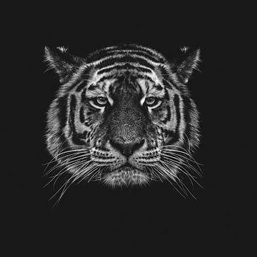 Tiger von Aron Nijs