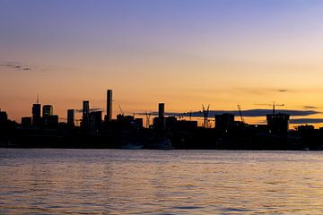 de silhouetten van Brisbane van hugo veldmeijer