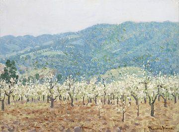 Obstgarten in den Bergen von Saratoga, Kalifornien, Theodore Wores
