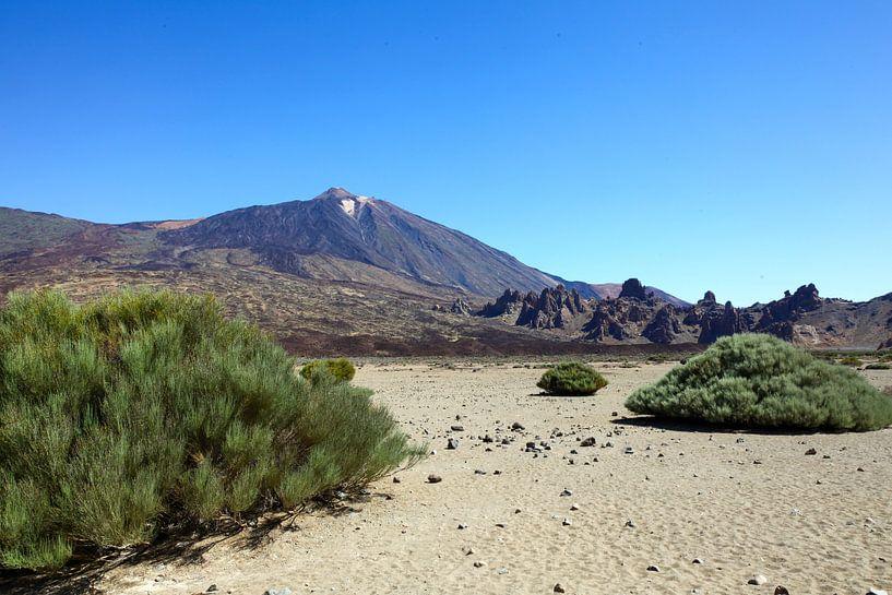 Tenerife van Elly Damen