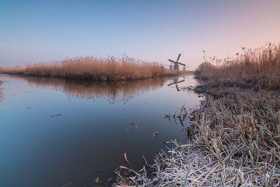Cold morning in Kinderdijk