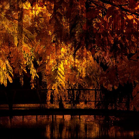 Herfst in het park van Jacq Christiaan