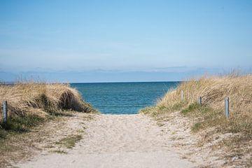 Strandidylle van Vanessa Mahn
