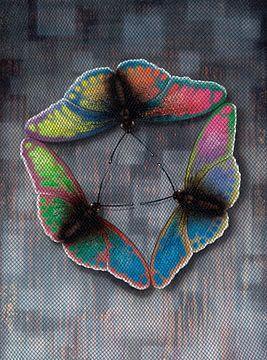 Schmetterlingsflug von Achim Prill