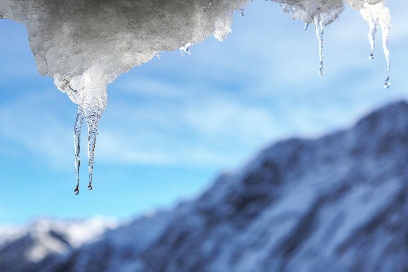 ijspegel van Frank Herrmann