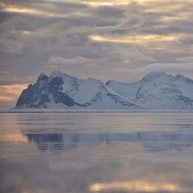 Zwanenmeer van Elisa Hanssen