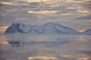 Schwanensee von Elisa in Iceland