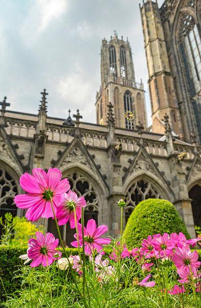 Domtoren en Domkerk in Utrecht met bloemen in het Pandhof in de voorgrond