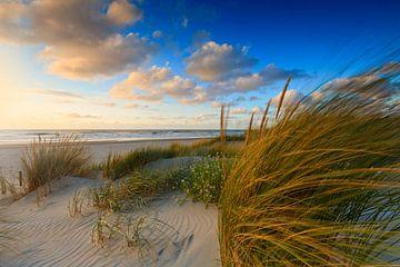 zonsondergang achter de Hollandse duinen von gaps photography