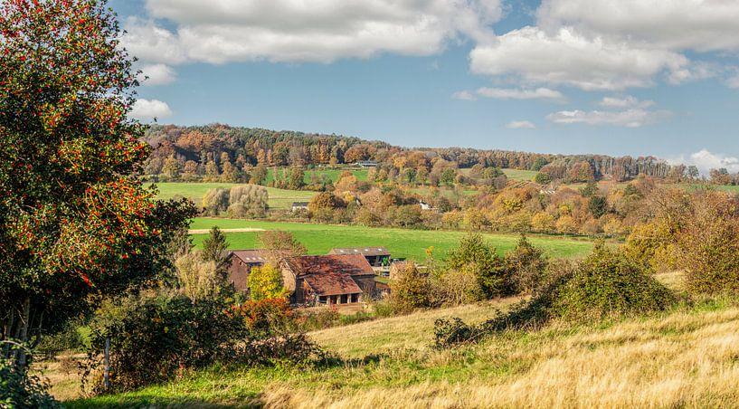 Herfstkleuren op de heuvels van Zuid-Limburg van John Kreukniet