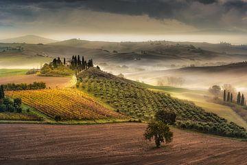 Toskana mit Landhaus / Bauernhof , Weinfeld und schöner Hügellandschaft von Fine Art Fotografie