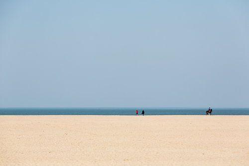 Strakke lijnen aan de kust