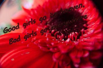 Good Girls van Erik Reijnders