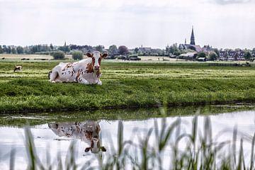 Boskoop Nederland van Rob van der Teen