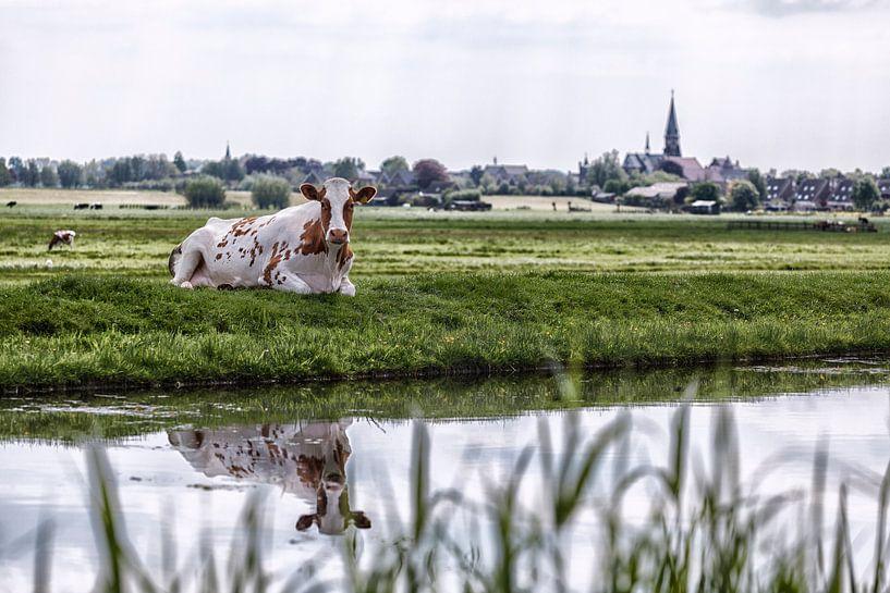 Boskoop the Netherlands von Rob van der Teen
