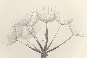 Herbstblumen von Caroline Drijber