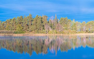 Autumn reflection van Jeroen Kleiberg
