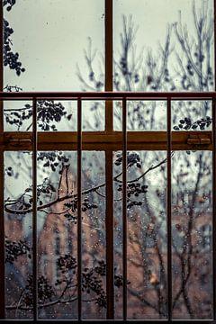 Op een regenachtige dag van Greet Thijs
