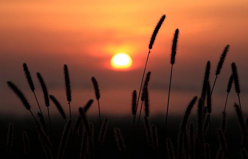 Zonsondergang von Ludo Verhoeven